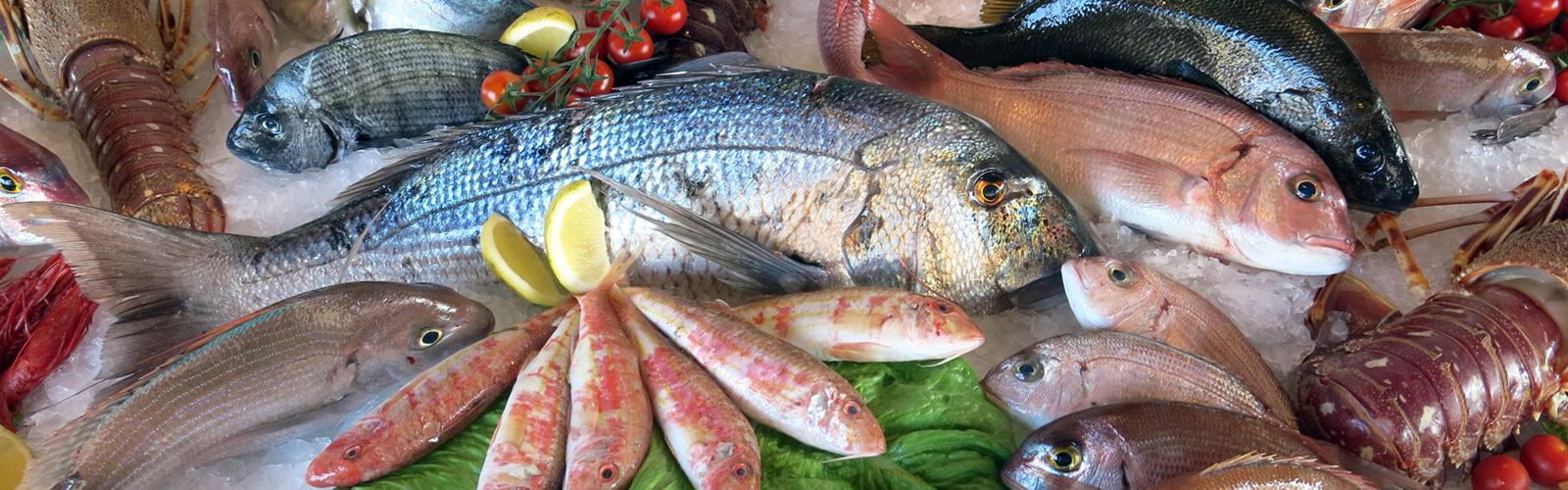 Pescados - Pescados y Mariscos Angelito