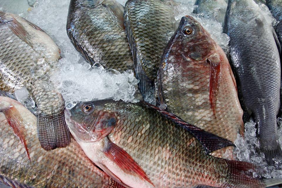 Pescados y Mariscos Angelito: tu distribuidor de pescado y marisco en Sevilla. - Pescados y Mariscos Angelito