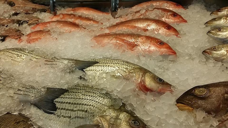 ¡Comprar pescado puede ser tan sencillo como te propongas! - Pescados y Mariscos Angelito